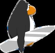 Silver Surfboard IG 2