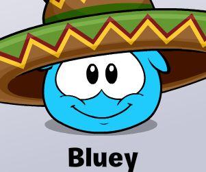 File:JWPengie Bluey.jpg