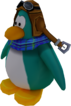 Sled Racer Penguin Model Aqua