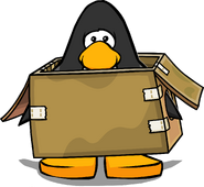Box Costume on Player Card
