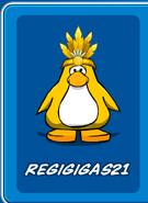Reg21