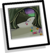 Candy Forest Path Background clothing icon ID 9077
