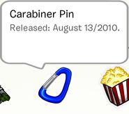 CarabinerPinSB