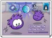 PurplePufflePostcard