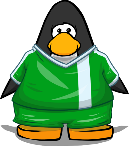 File:Clothing 24130 player card.png