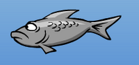 OneGreyFish