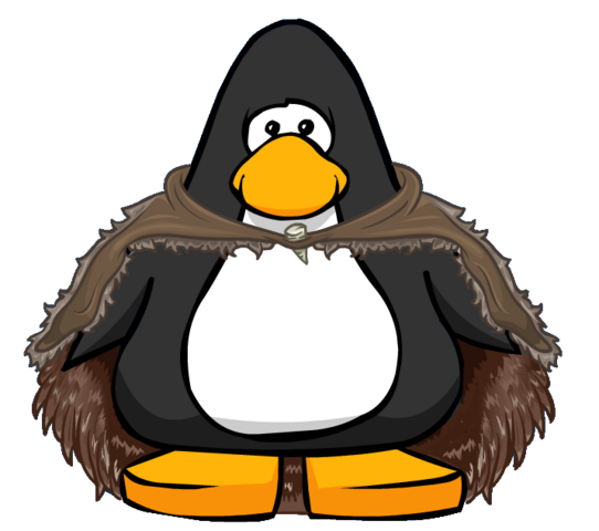 File:Thick Hide Cloak from a Player Card.PNG