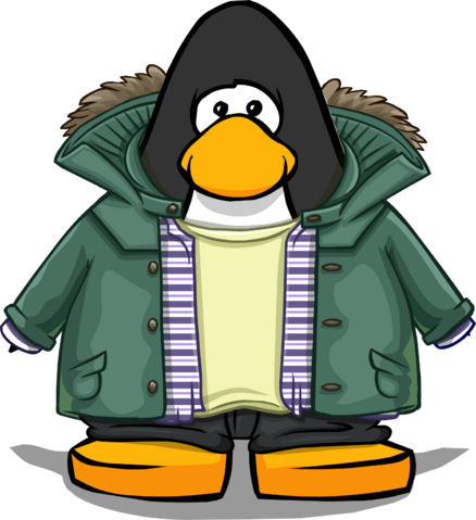 File:Green Parka on a Player Card.png