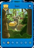 Sasquatch Playercard 2016