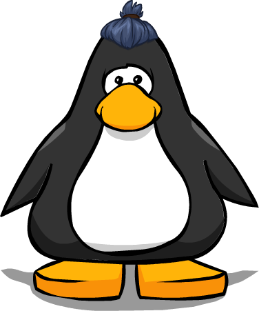 File:The Top Knot PC.png