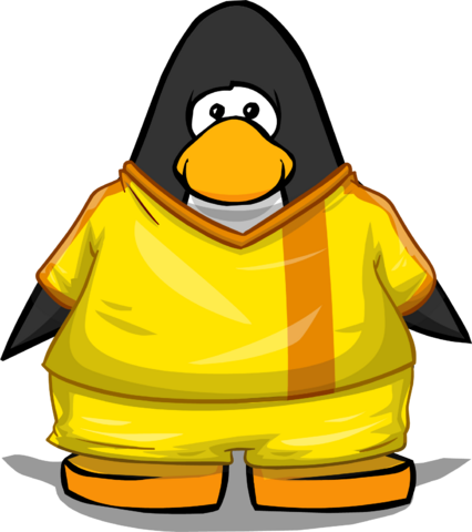 File:Clothing 24129 player card.png