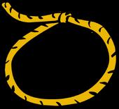 Lasso clothing icon ID 327