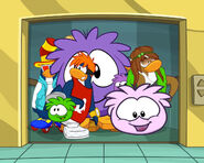 Puffle Party Wallpaper