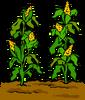 Garden sprite 014