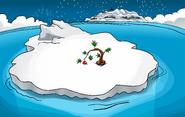New Year's 2008 Iceberg