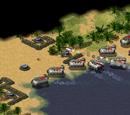 Hostile Shore