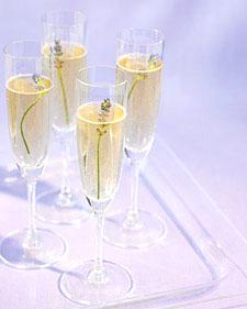 Mwd102281 spr07 champagne l