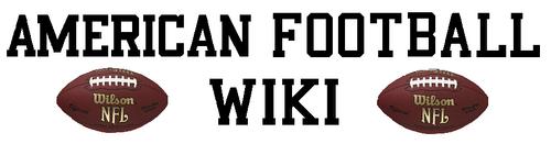 Wiki-wordmark Large