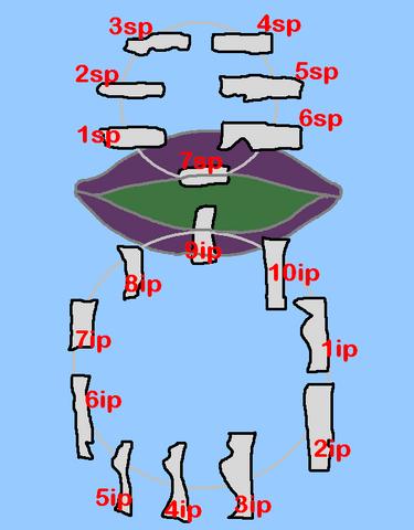 File:Rpiz4.PNG