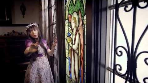 Limited Love PV