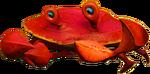 Crab N. Sane Trilogy