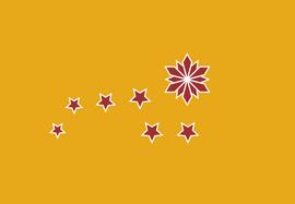 Chinese federation flag