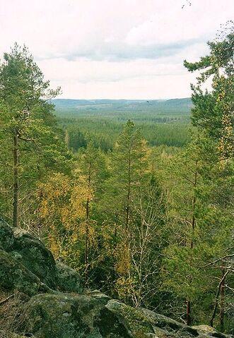 File:414px-Norra Kvill Nationalpark.jpg