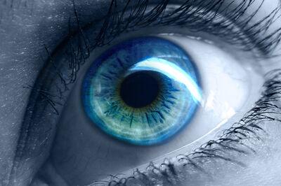 Blue eyes 01