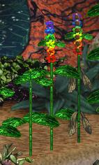 Rainbowbamboo