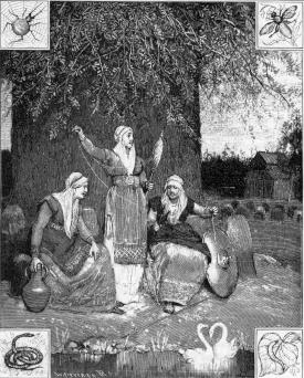 Mythologic Norns