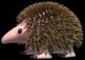 C3hedgehog.png