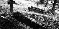 Self-Burial