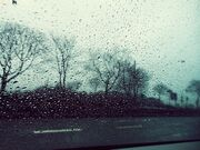 Rainonthestreet