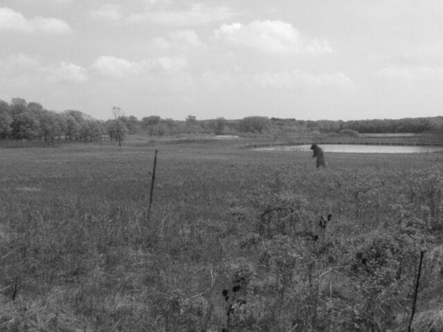 File:Meadow-lake.JPG