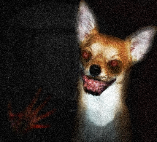 File:Wayne.Jpg The Dog Creepypasta.png