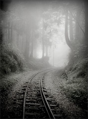 File:Abandoned railway.jpg