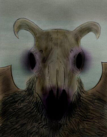 File:Sheepskull col13.jpg