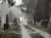Cemetery in the Rain