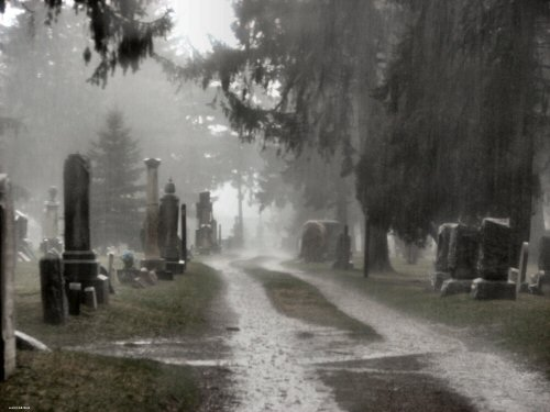 File:Cemetery in the Rain.jpg