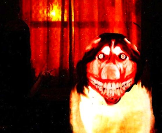 File:Smiledog.Jpg
