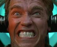 File:Angry Arnold.jpg