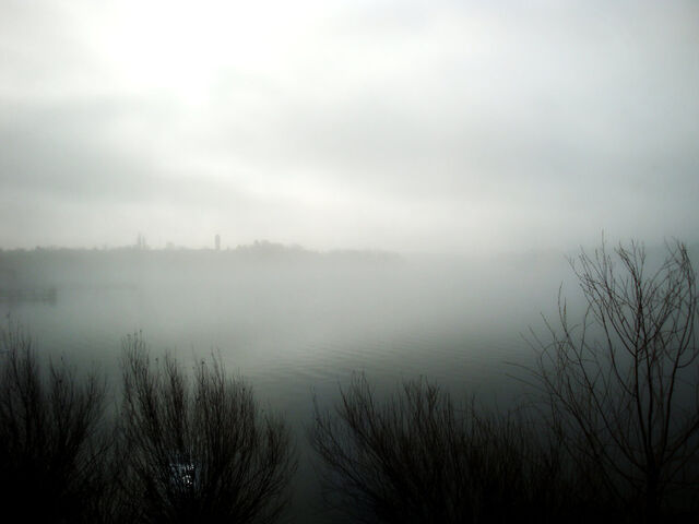 File:Foggy lake by najescha-d3d4pd0.jpg