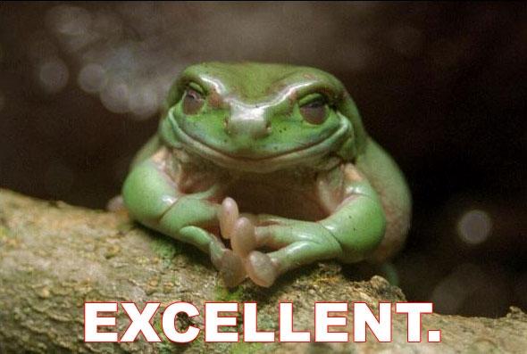 File:Excellent-frog.jpg