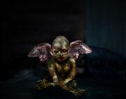 Killahawke cherub