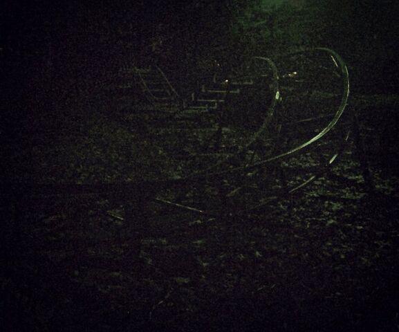 File:Roller coaster by queendreaveev-d6s0yyt.jpg