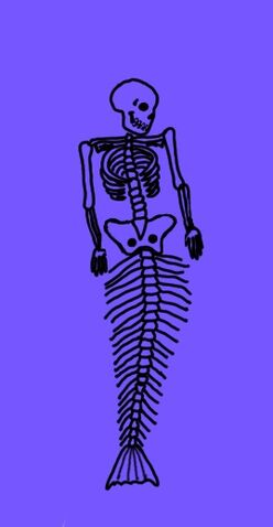 File:Mermaid skeleton.jpg
