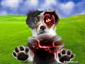 Thumbnail for version as of 19:15, November 27, 2011