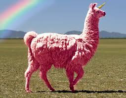 File:Llama.jpg