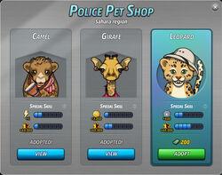 Pets of sahara