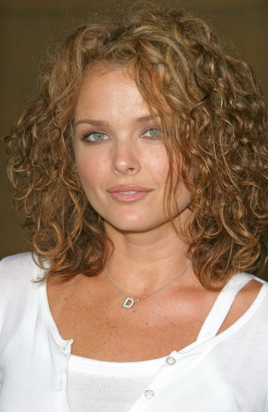 Image result for dina meyer